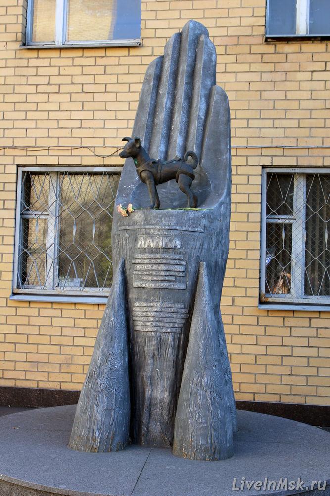 Памятник лайке в москве фото изготовление памятников в псков шевронов