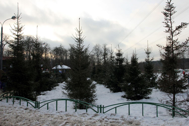 Песни преснякова белый снег